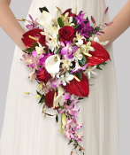 Cascading bouquet of anthurium, orchids, roses & mini callas.